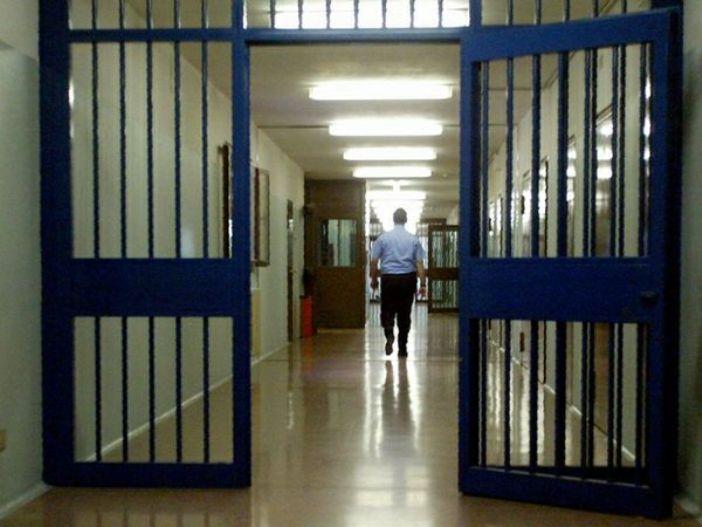 amnistia e indulto 2014