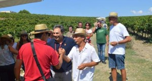 Mandrarossa Vineyard Tour 2015