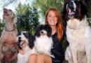 """Strage di cani a Sciacca, Leidaa: """"Inaccettabile autoassoluzione del comune"""""""
