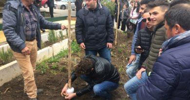 """Agroalimentare, il Pistacchiodi Raffadali verso il riconoscimento Dop: """"Nuovi investimenti nell'Agrigentino"""""""