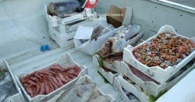 """Operazione """"Spring fish"""" nell'Agrigentino: sequestrati circa 193 kg di prodotti ittici privi di tracciabilità"""