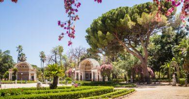 Primavera all'Orto Botanico di Palermo, da lunedì riavvio in sicurezza