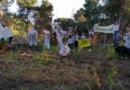 Incendi, in Sicilia flash mob contro devastazione boschi
