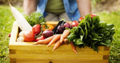Agricoltura, Coldiretti: approvare subito la legge sul biologico